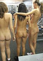 three sweet asses